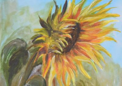 KF 0487 - Sonnenblume -