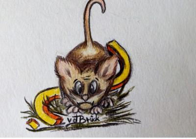 KF 0492 - Maus-Fragezeichen -