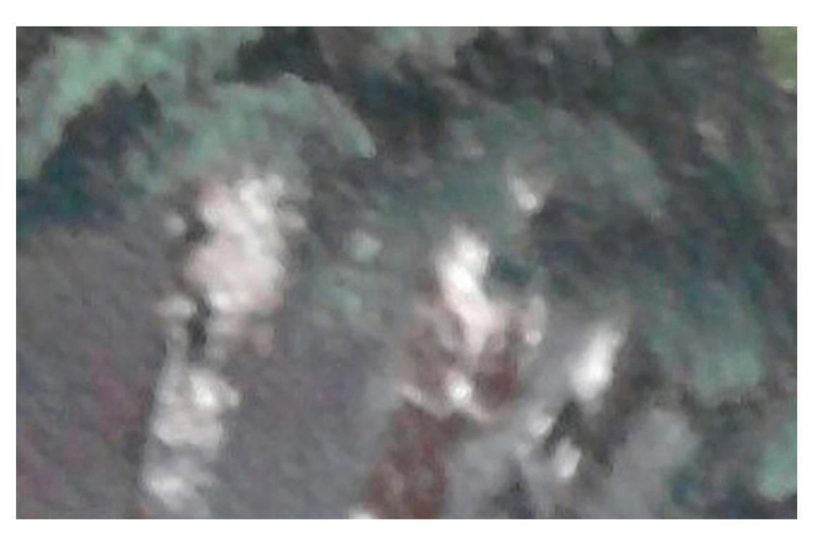 BL0138-09